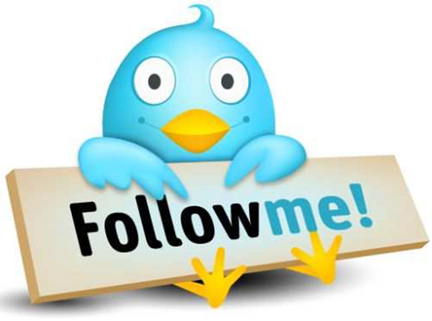 Follow Me Twitter Bird