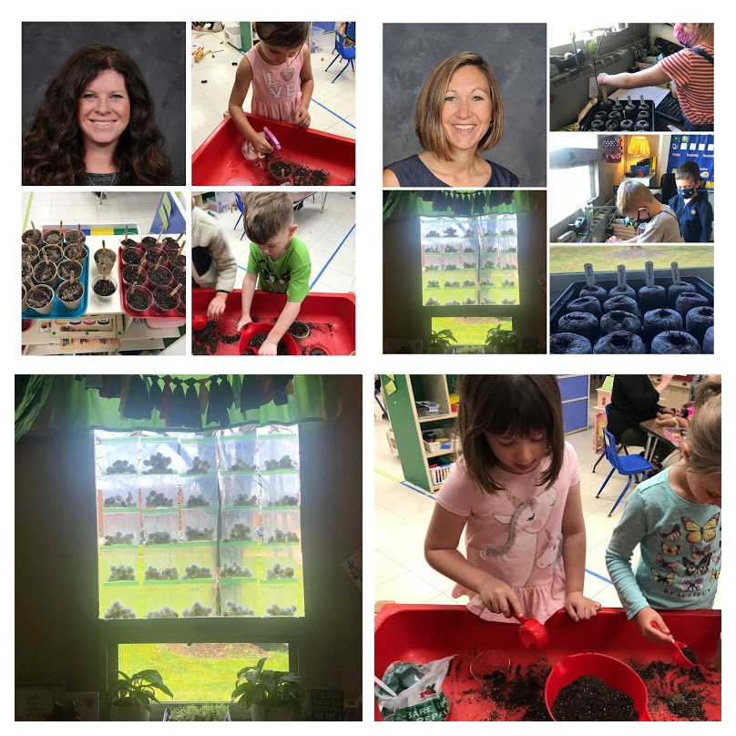 collage image featuring:  Tiny Toppers PreK Intervention Specialist Miss Beth Bumpus and Kindergarten Teacher Mrs. Amy Ridgeway staff photos [photo credit:  Pastor Photography] and assortment of photos of students potting and watering plants in the classroom and photos of potted plants in the classroom