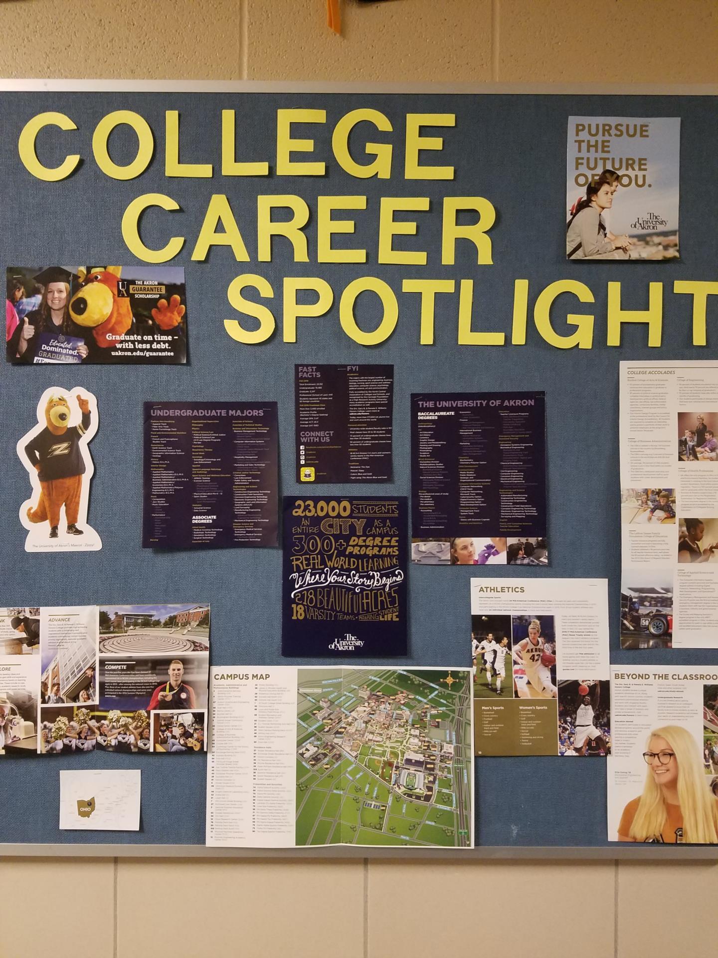 college career spotlight