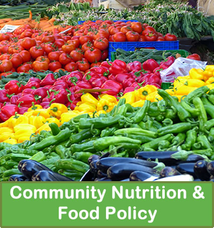 Community nurition and food policy