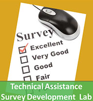 technical assistance and survey development lab