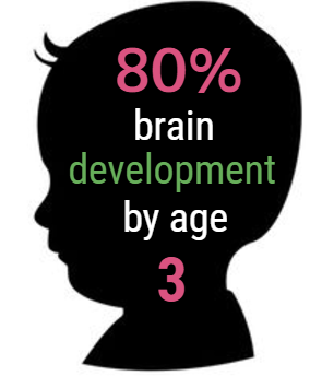 80% brain development by age 3
